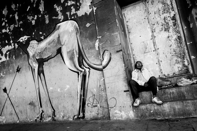 Person sitting next to graffiti of cheetah, Salt River, 2012