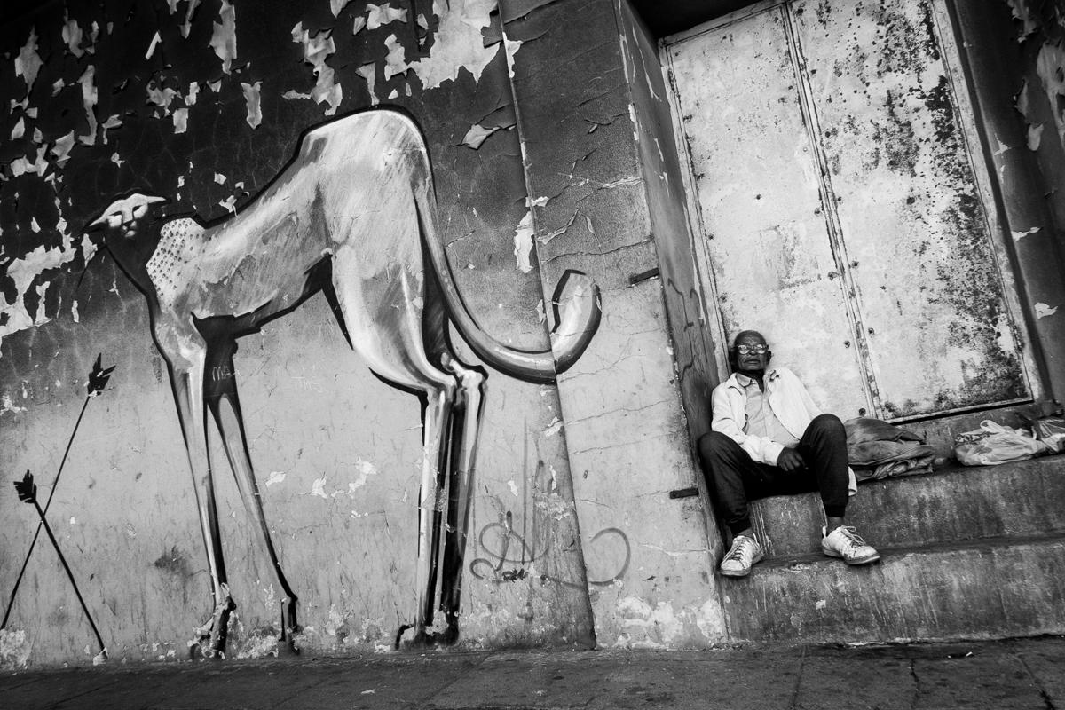 06-jpg mads-norgaard-0027-jpg Person sitting next to graffiti of cheetah, Salt River, 2012